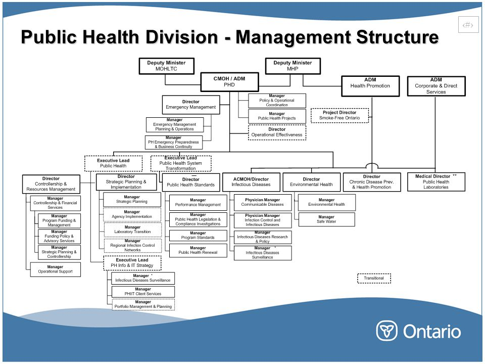 Public Health Division - Management Structure