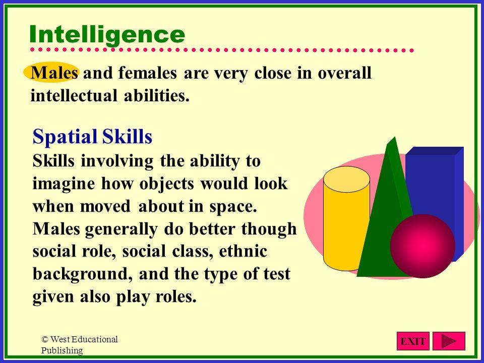 Intelligence Spatial Skills