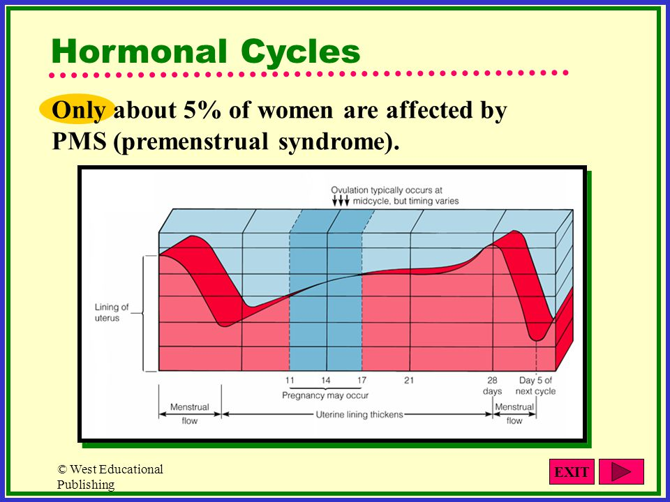 Hormonal Cycles Only about 5% of women are affected by PMS (premenstrual syndrome). © West Educational Publishing.