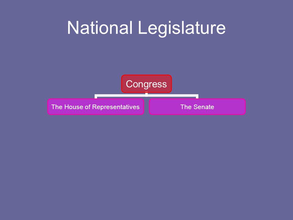 National Legislature