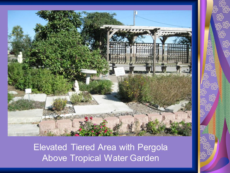 Elevated Tiered Area with Pergola Above Tropical Water Garden