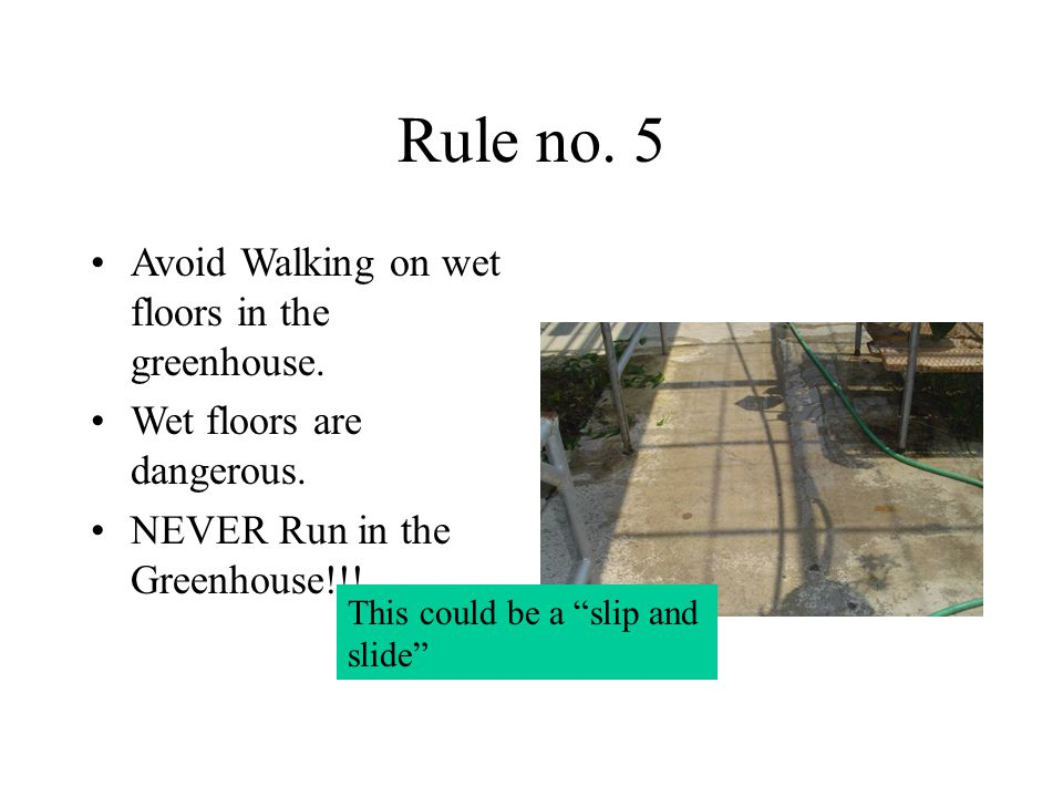 Rule no. 5 Avoid Walking on wet floors in the greenhouse.