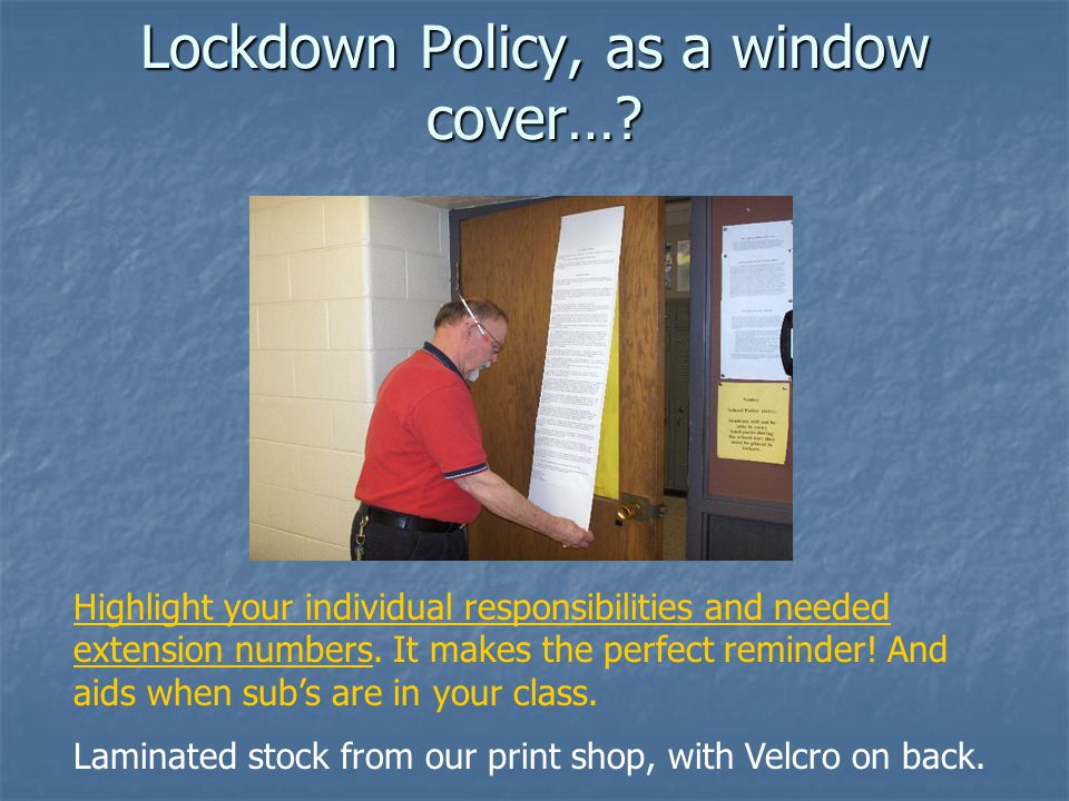 Lockdown Policy, as a window cover…