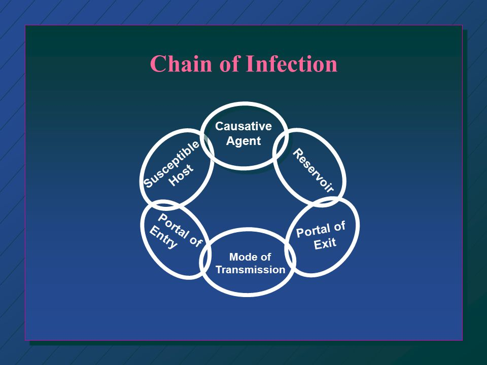 Chain of Infection Causative Agent Susceptible Reservoir Host