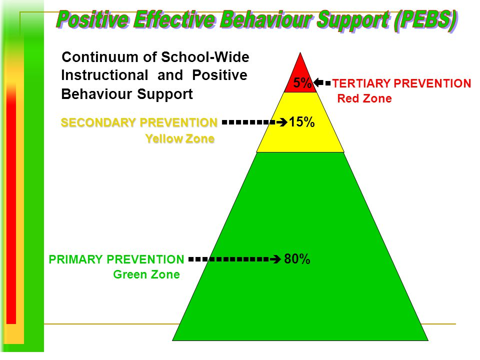 Positive Effective Behaviour Support (PEBS)