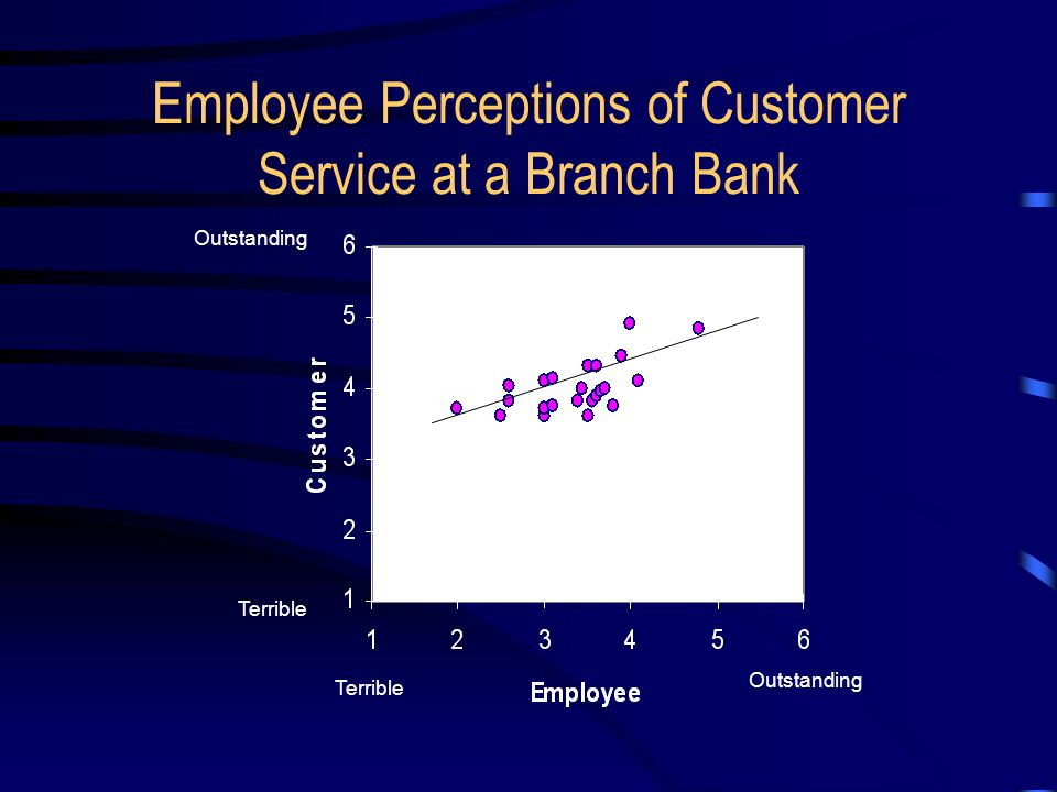 Employee Perceptions of Customer Service at a Branch Bank