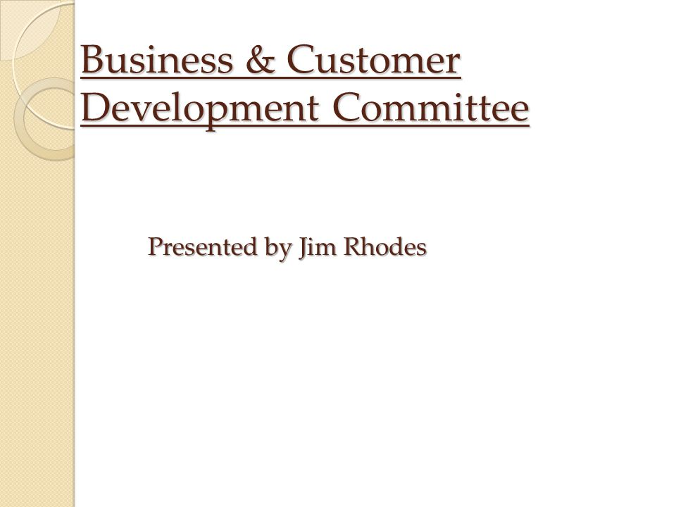 Business & Customer Development Committee