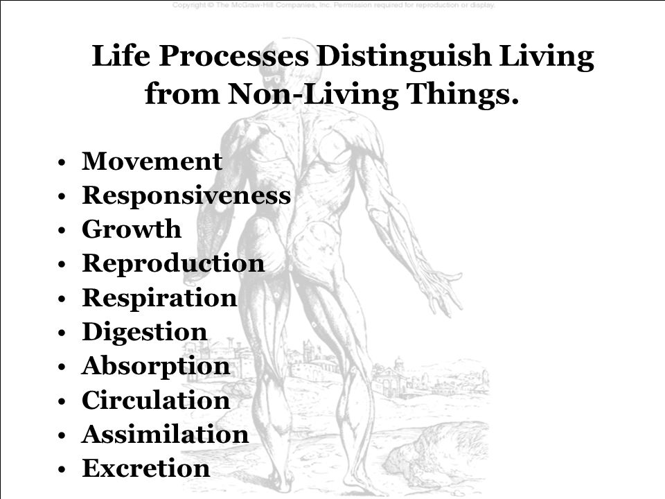 Life Processes Distinguish Living from Non-Living Things.