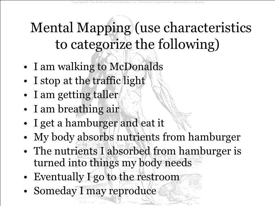 Mental Mapping (use characteristics to categorize the following)