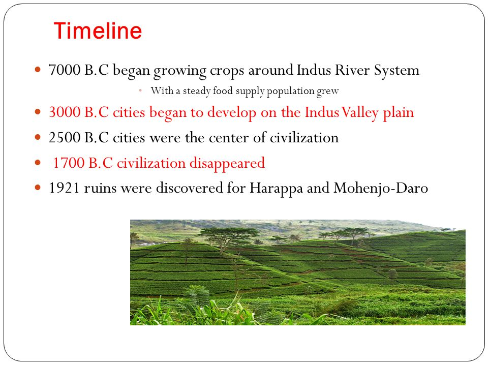 Timeline 7000 B.C began growing crops around Indus River System