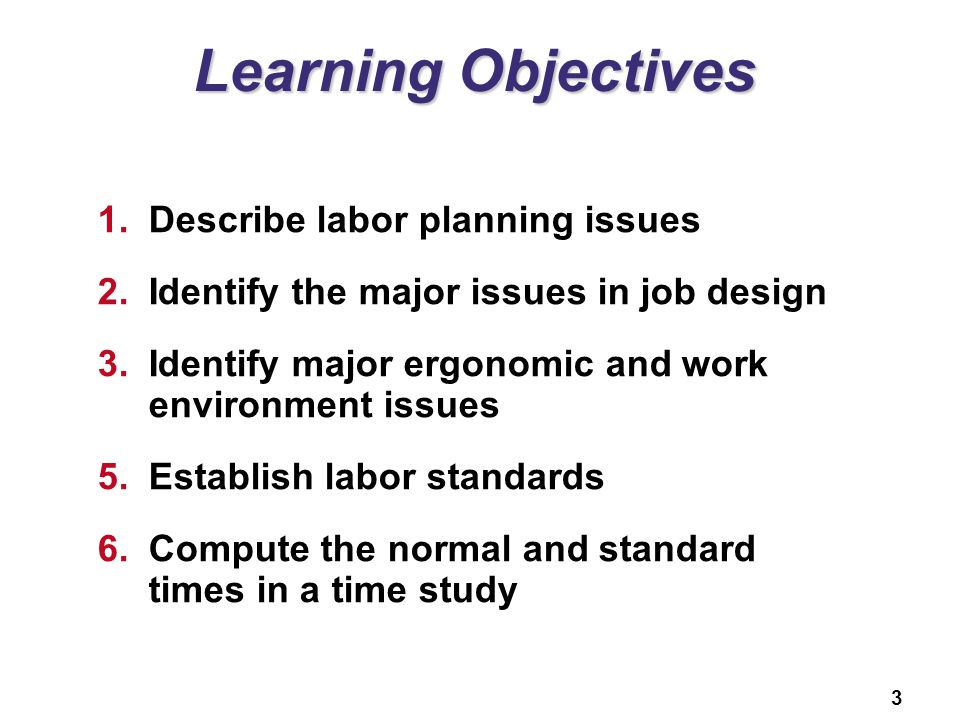 Learning Objectives Describe labor planning issues