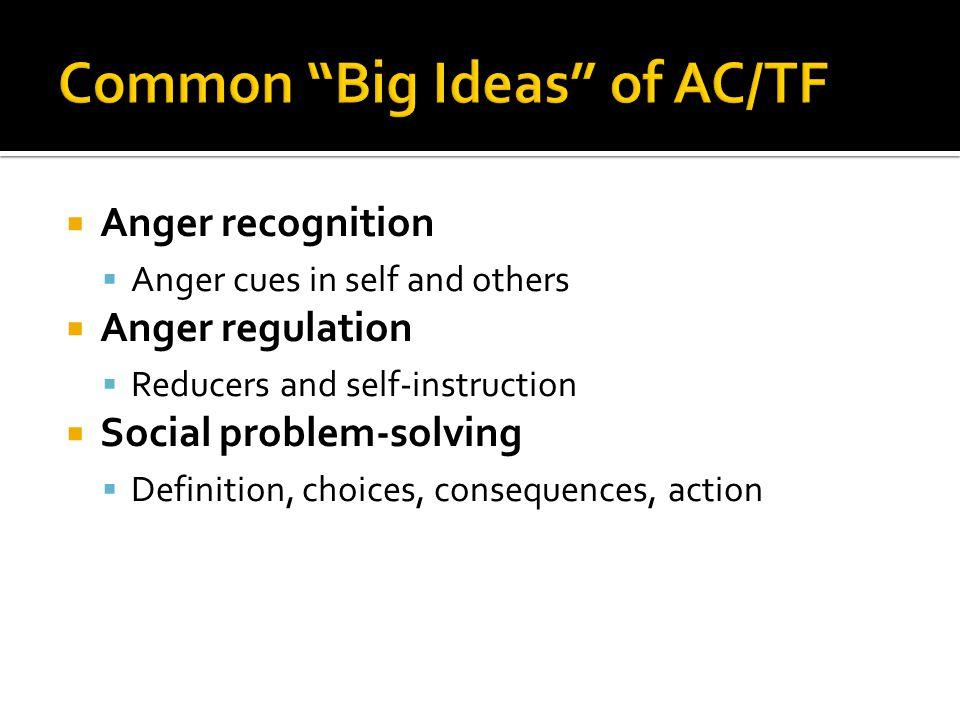 Common Big Ideas of AC/TF