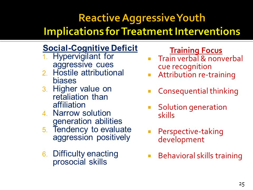 Reactive Aggressive Youth Implications for Treatment Interventions