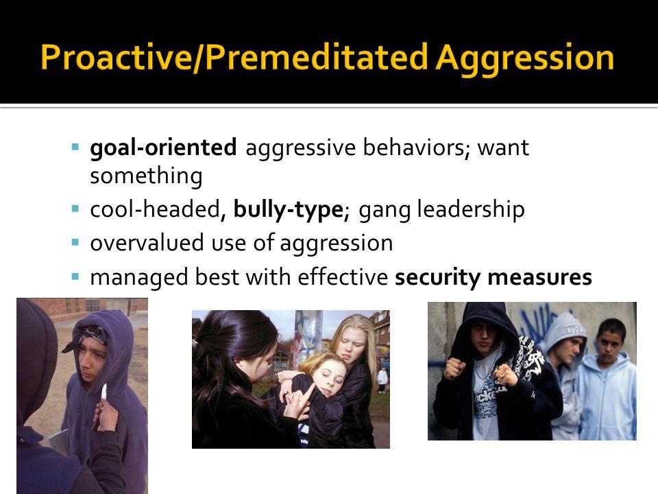 Proactive/Premeditated Aggression