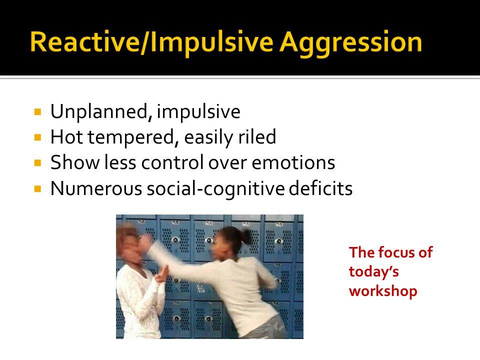 Reactive/Impulsive Aggression