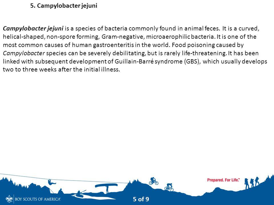 5. Campylobacter jejuni