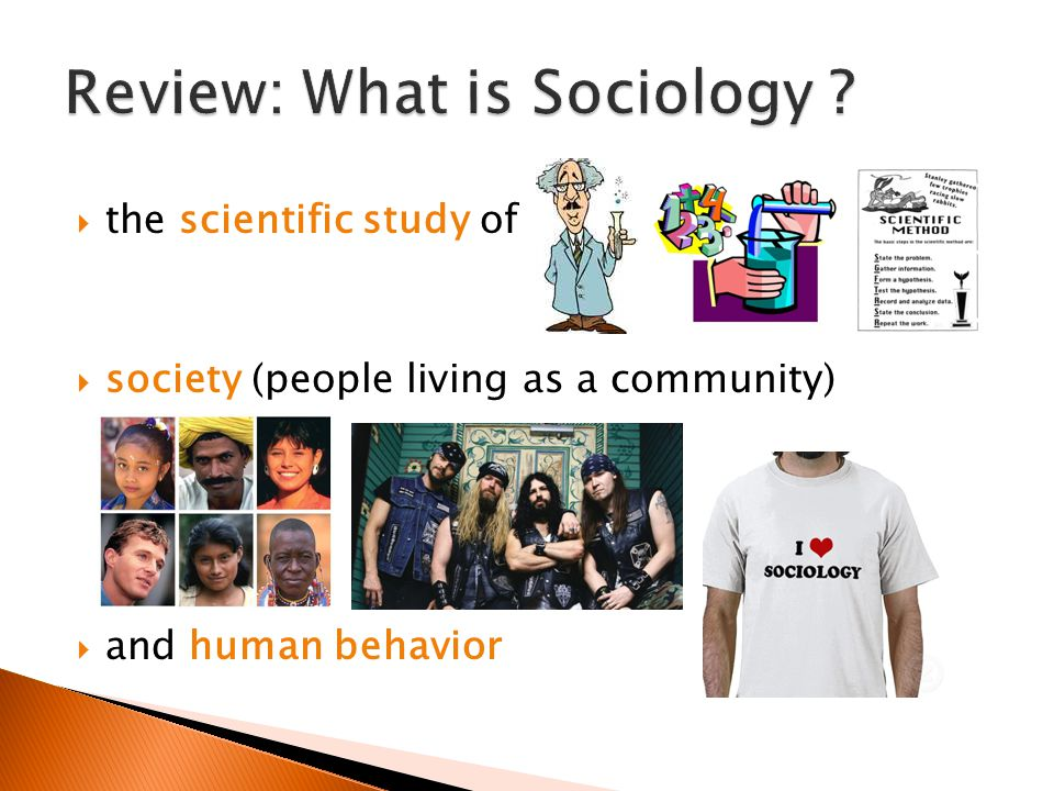 Review: What is Sociology