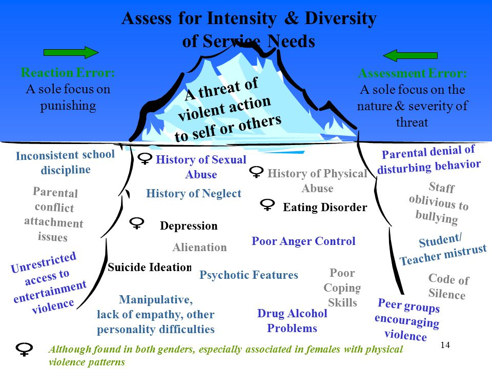 Assess for Intensity & Diversity of Service Needs