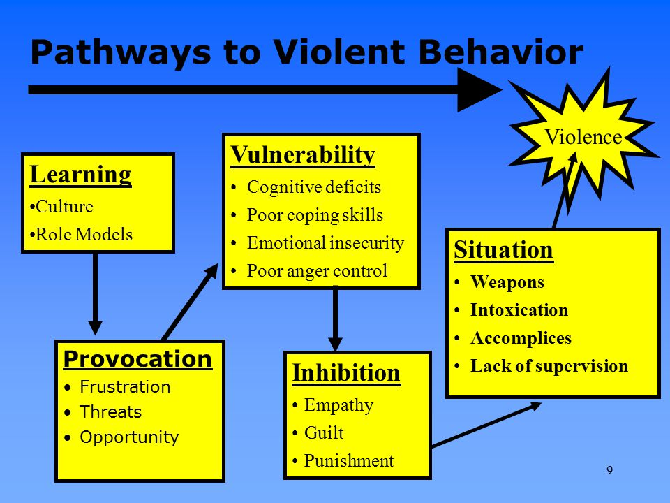 Pathways to Violent Behavior