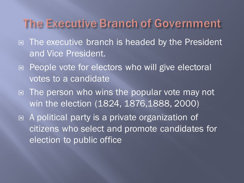 The Executive Branch of Government