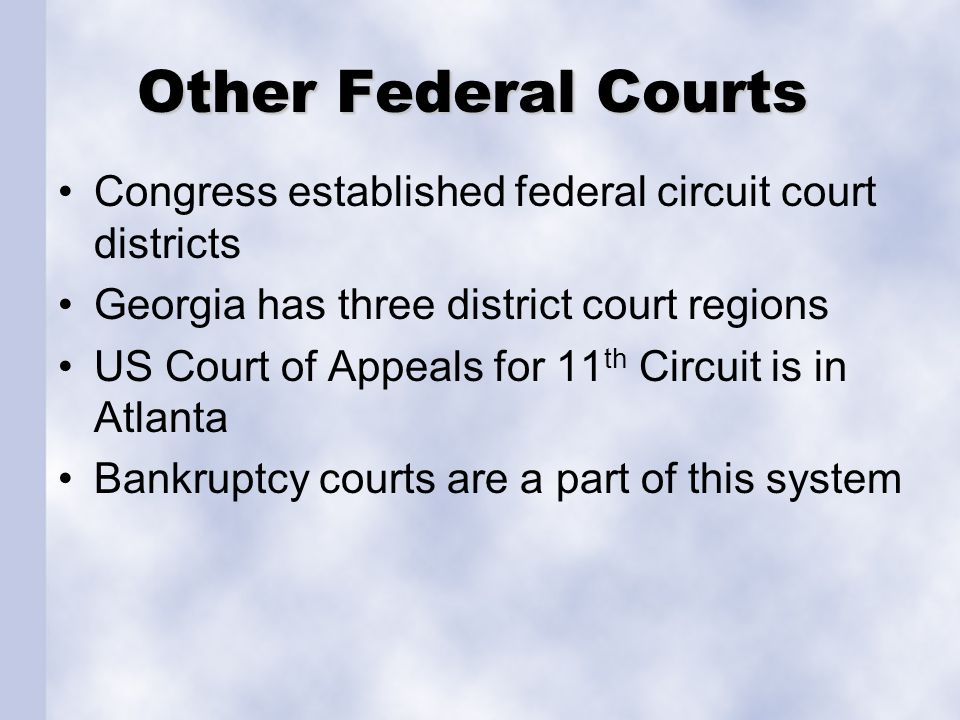 Other Federal Courts Congress established federal circuit court districts. Georgia has three district court regions.