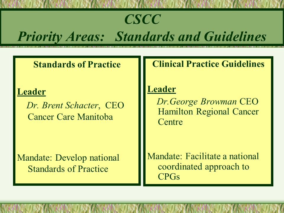 CSCC Priority Areas: Standards and Guidelines