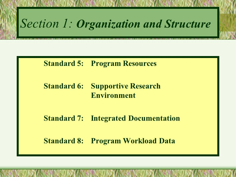 Section 1: Organization and Structure