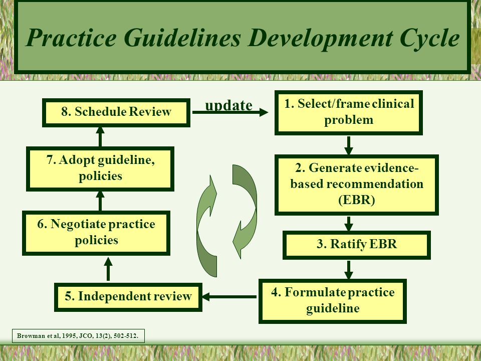 Practice Guidelines Development Cycle