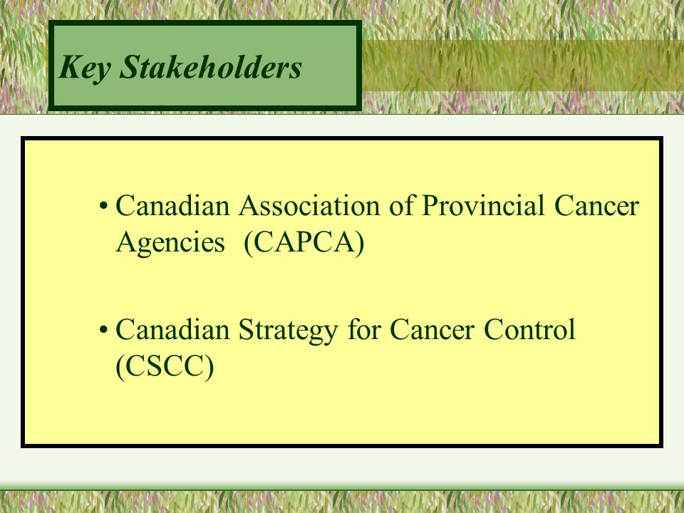 Key Stakeholders Canadian Association of Provincial Cancer Agencies (CAPCA) Canadian Strategy for Cancer Control (CSCC)