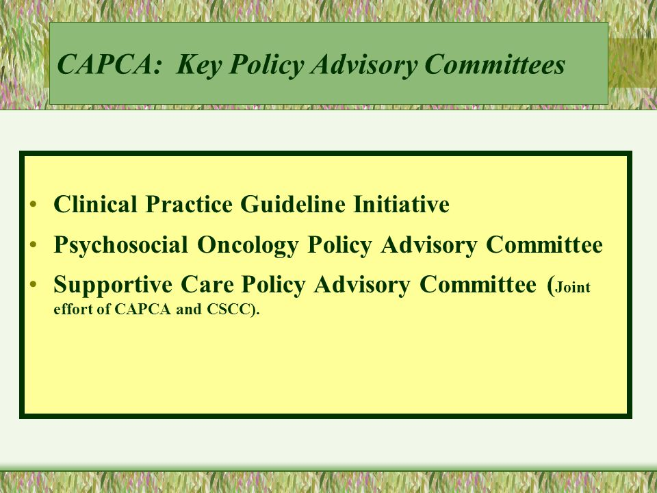 CAPCA: Key Policy Advisory Committees