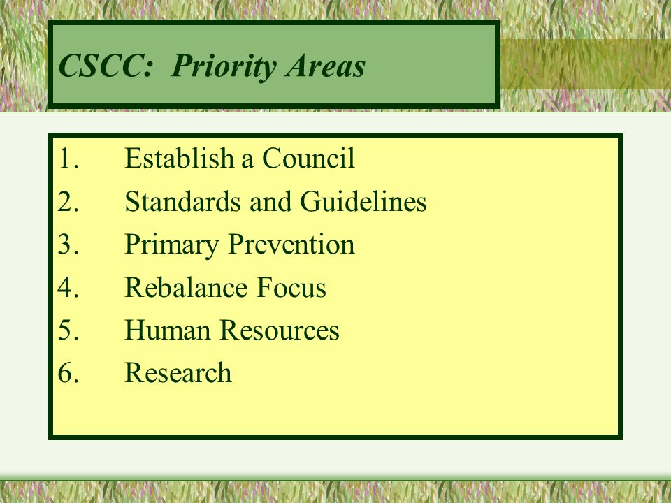 CSCC: Priority Areas 1. Establish a Council