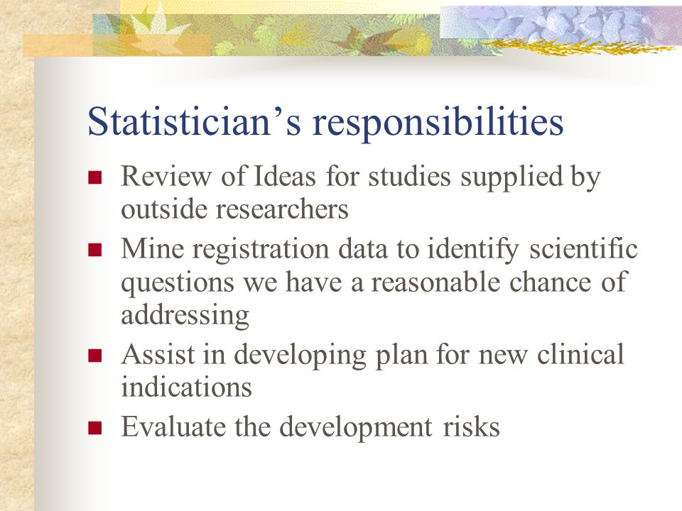 Statistician's responsibilities