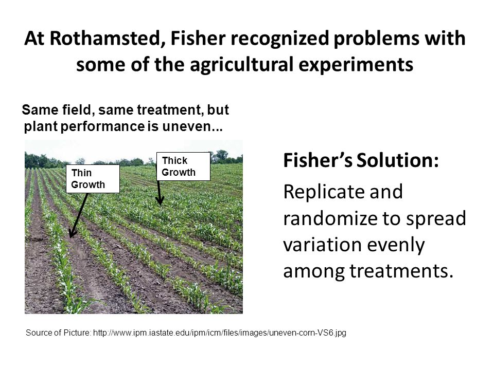 Same field, same treatment, but plant performance is uneven...