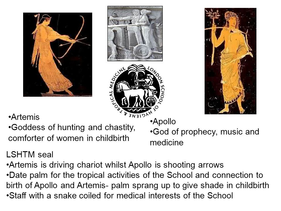 Artemis Goddess of hunting and chastity, comforter of women in childbirth. Apollo. God of prophecy, music and medicine.
