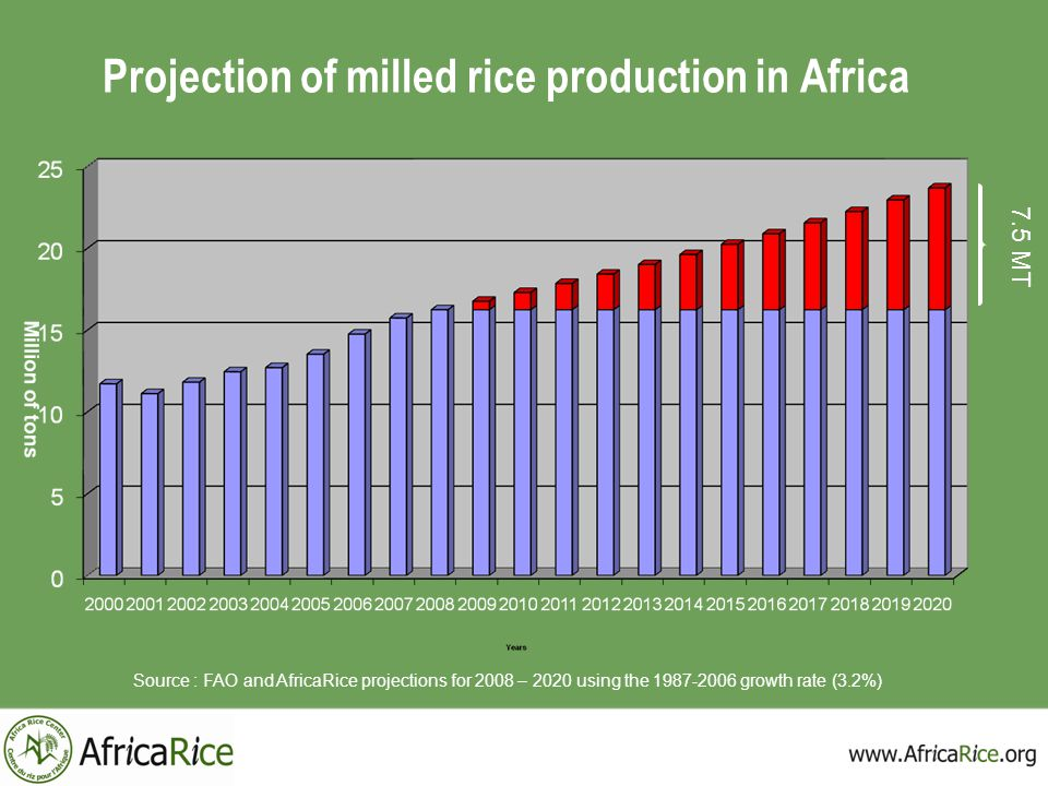 Projection of milled rice production in Africa