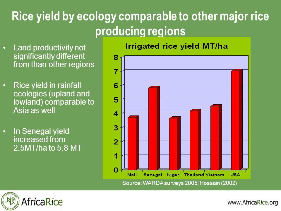 Rice yield by ecology comparable to other major rice producing regions