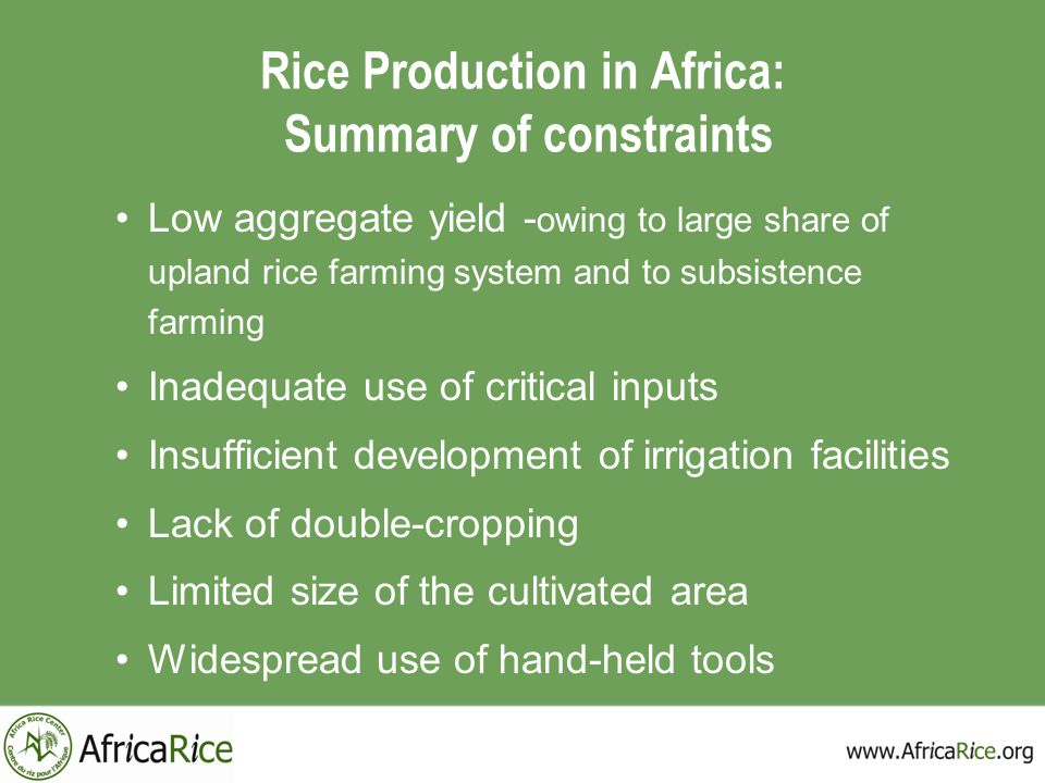 Rice Production in Africa: Summary of constraints