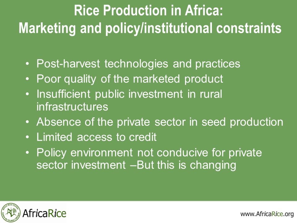 Rice Production in Africa: Marketing and policy/institutional constraints
