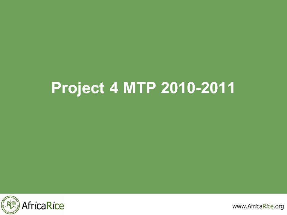 Project 4 MTP 2010-2011