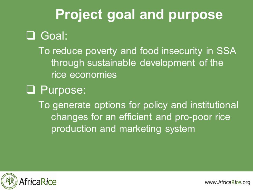 Project goal and purpose