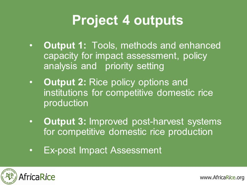 Project 4 outputs Output 1: Tools, methods and enhanced capacity for impact assessment, policy analysis and priority setting.