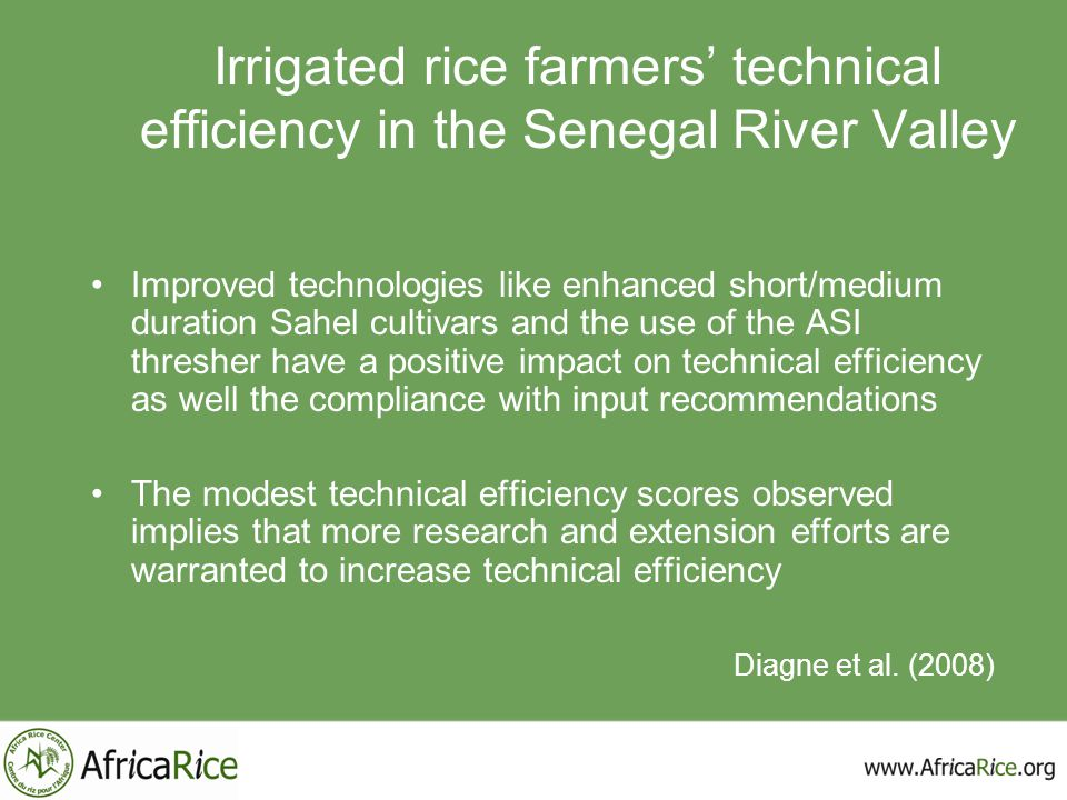 Irrigated rice farmers' technical efficiency in the Senegal River Valley