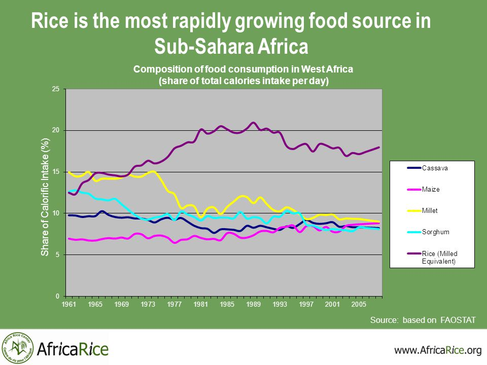 Rice is the most rapidly growing food source in Sub-Sahara Africa