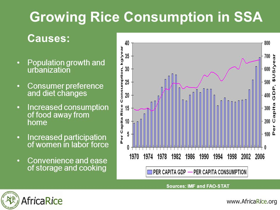 Growing Rice Consumption in SSA