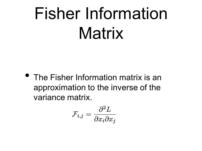 Fisher Information Matrix