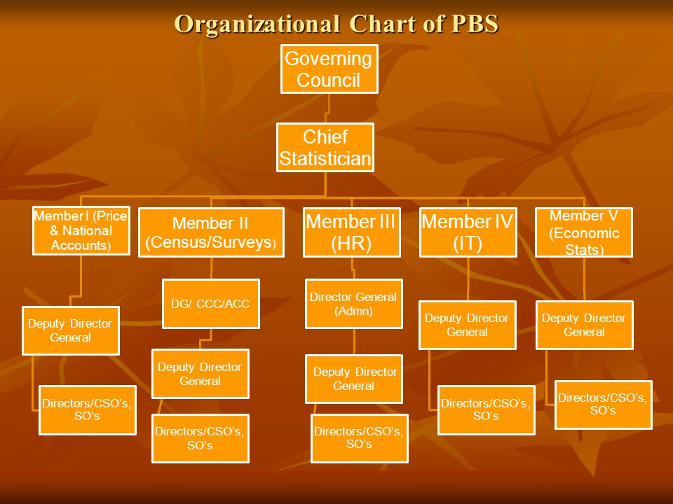 Organizational Chart of PBS