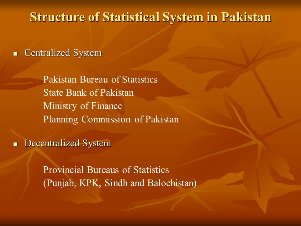 Structure of Statistical System in Pakistan