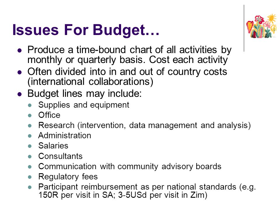 Issues For Budget… Produce a time-bound chart of all activities by monthly or quarterly basis. Cost each activity.