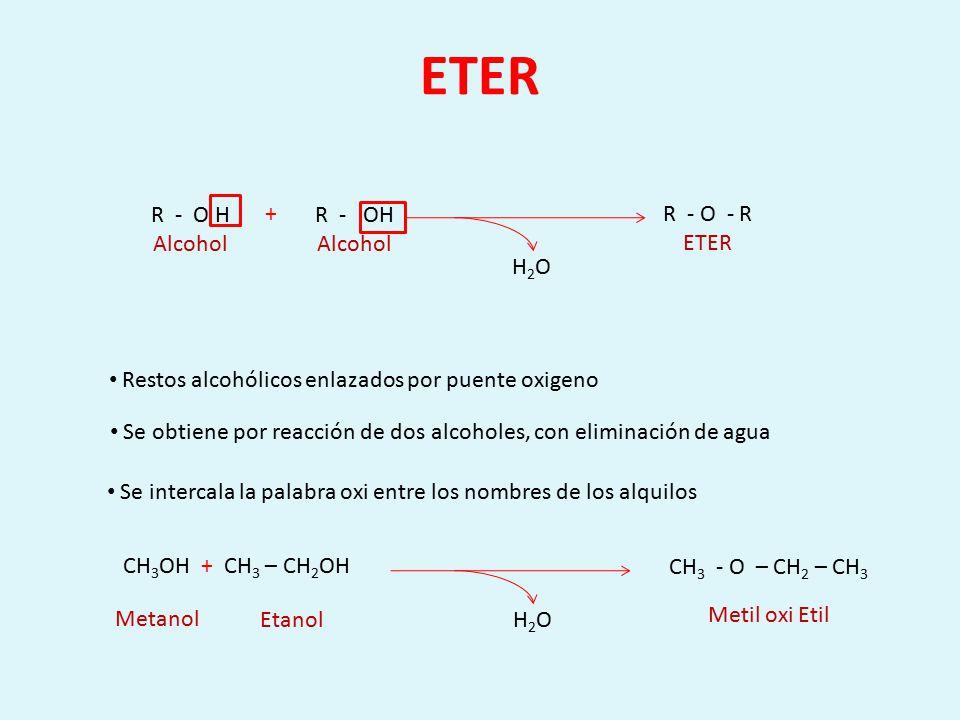 ETER R - O H Alcohol + R - OH Alcohol R - O - R ETER H2O