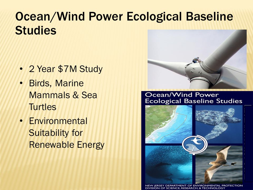 Ocean/Wind Power Ecological Baseline Studies